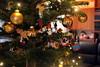 Merry Christmas! (Yukkuriko) Tags: deutschland germany ドイツ niedersachsen marl weihnachten weihnachtsbaum christmastree holidayseason