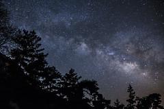 Milkyway (Yavutza) Tags: stars starynight nightphotography nikonphotography milkyway