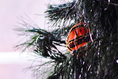 Goodbye Ornaments (katyearley) Tags: tinsel green orange fall winter christmas needles leaves tree love basketball ornament 300mm canonrebelt6