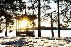 Gazebo illuminated by sun to be natural lighthouse (VisitLakeland) Tags: sun morning sunrise gasebo lighthouse tree lake winter snow ice finland nature kuopio jää talvi aurinko auringonnousu huvimaja valo lumi järvi