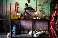 Kolkata. --  The Cat and man selling fresh chicken (Time to try) Tags: hen cat leicaq leica portrait india kolkata