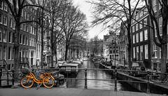 Amsterdam. Holland. (juanjo_rueda) Tags: amsterdam holland holanda netherlad bici bike canal blackandwhite