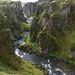 Fjaðrárgljúfur Canyon (Iceland on iphone)