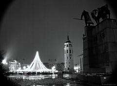 Merry Christmas! (beatutifulgrain.com) Tags: ilforddelta3200 mamiya6451000s mamiyasekor45mm28n filternd3stops