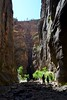 130616-05 (2013-06-22) - 1323 (scoryell) Tags: thenarrows utah virginriver zionnationalpark