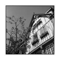 colombages • rouen, normandy • 2016 (lem's) Tags: colombages pans de bois maison wooden house architecture rouen normandie normandy rolleiflex planar