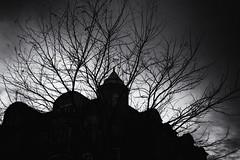 Fractured 120.365 (ewitsoe) Tags: ewitsoe canon eos 6dii street urban city cityscapejezyce buildings tree winter look sky monochrome bnw blackandwhite drama grain poznan poland 365 120