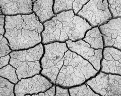 Mud and Stuff (Jeff_Warner) Tags: monochrome nikond810 nikon2470mm mud