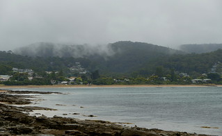 A cool and misty day in Lorne...