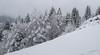 Radstadt (Pieter Mooij) Tags: austria oesterreich oostenrijk radstadt pongau untertauern snow sneeuw boom berg