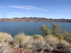 Lake Havasu at Bill Wililiams NWR (h willome) Tags: 2017 arizona desert lakehavasu wildliferefuge billwilliamsnwr hiking