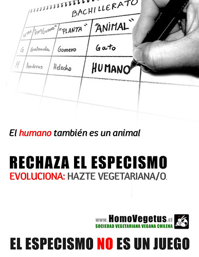 "afiche Bachillerato • <a style=""font-size:0.8em;"" href=""http://www.flickr.com/photos/126890823@N02/38667661765/"" target=""_blank"">View on Flickr</a>"