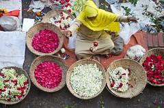 Flower shop! (ashik mahmud 1847) Tags: flower color bangladesh shahbagflowermarket flowershop shop flowermarket d5100 nikkor people woman colorful shahbagflowershop