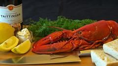 Lobster lunch at home (Franz Airiman) Tags: lunch lobster hummer helg weekend wine vin champagne taittinger dill bröd bread aioli citron lemon kniv knife cork kork global hemma athome kök kitchen bubbel bubbly sparkling mousserande seafood skaldjur stilleben stilllife food mat matbild foodphotography matfoto köttkniv meatknife