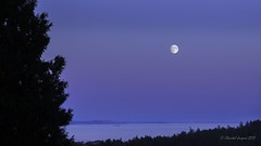 The blue hour from Cordova Bay Ridge, Victoria, BC (Chantal Jacques Photography) Tags: bluehour cordovabayridge home victoriabc fullmoon viewfromthedeck cityscape