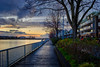 New West Quay Boardwalk (rdpe50) Tags: landscape city river fraserriver boardwalk evening sunset flowers shrubs tree railing buildings sky newwestminster bc