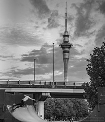 Skateboarder at Victoria Park Against the Sky Tower in Auckland