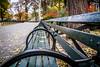 A Sunday Morning in Central Park (Phil Roeder) Tags: newyorkcity manhattan centralpark park leica leicax2 bench green