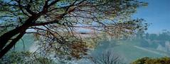 Citadelle de Blaye : un autre point de vue... (citadelledeblaye) Tags: citadelle feuilles paysages bleu soleil rivière île