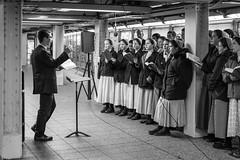 Subway Yuletide (John St John Photography) Tags: streetphotography candidphotography 42ndstreet subwaystation broadway newyorkcity newyork mta christmas yuletide choir singers carolling zionspraises mennonite richland bw blackandwhite blackwhite blackwhitephotos johnstjohn
