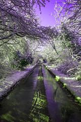 Old London Road Snow, Purple Sky