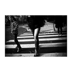 zagreb/ザグレブ (s_inagaki) Tags: industar69 monochrome oldlens morningwalk crossing トラム walking ザグレブ bnw street russianlens モノクロ 白黒 vintagelens 通り bw 朝の散歩 blackandwhite スナップ reflection snap 横断歩道 zagreb