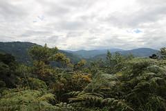 IMG_1058 (raikbeuchler) Tags: colombia valledecauca sanaugustin unesco unescoweltkulturerbe unescoworldheritagesite tribe archäologie archeology