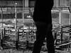 Jailed #5 (franleru1) Tags: francoiselerusse londres photoderue uk blackandwhite chemindefer ennoiretblanc monochrome noiretblanc railway silhouette streetphotography urbain urban urbandisaster urbanism