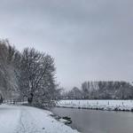 Winter river, Odijk, Netherlands - 0444 thumbnail