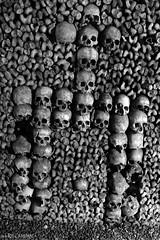 Sculptures made with Skulls & Bones (Red Cathedral uses albums) Tags: redcathedral aztektv sony alpha slt mkii sonyalpha a77ii a77 dslr sonyslta77ii translucentmirrortechnology wanderlust digitalnomad contemporaryart graffiti urbex alittlebitofcommonsenseisagoodthing travellingphotographer travel cosplay larp livinghistory blackandwhite zwartwit noiretblanc paris france catacombes catacombs ossements skull skeleton dead undead thewalkingdead horror eerie creepy scary halloween underground museum tunnels hell gateway catacomben cemetary burialplace cimetiere kerkhof massagraf tombe
