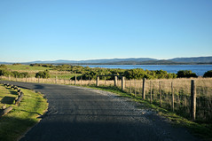 Walkway to Lighthouse   Low Head, Tasmania (Ping Timeout) Tags: tasmania tassie state australia vacation holiday june 2017 island south commonwealth oz bass strait hobart tas road lighthouse low head sunset afternoon sun fence view scene scenery sky blue clear grass green landscape nature shadow light