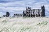 Leaning Ruin (2/31) (meepeachii) Tags: whitby whitbyabbey abbey england uk unitedkingdom greatbritain dracula draculashome landscape grasslands sky clouds photography nikon ruin ruins old sunny windy