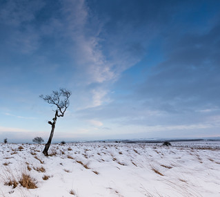 Big Moor in Winter
