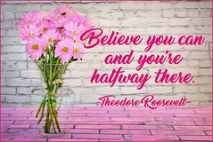 Believe you can... (Javcon117*) Tags: quote text saying typography javcon117 pink white daisy believe you can halfway there theodore roosevelt pretty motivational motivate inspire inspirational bouquet vase happy