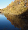 2017_11_0214 (petermit2) Tags: hatfieldmoors hatfield lindholme doncaster southyorkshire yorkshire peat bog humberheadpeatlands humberhead naturalengland nnr