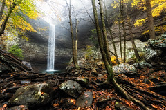 The Way of Things (Jeff Rowton) Tags: fall autumn waterfall water rocks cliff trees time ozonefalls nature naturalarea roots leaves fog
