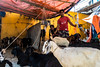 Gulshan Market (Hiro_A) Tags: gulshan gulshan2 dhaka bangladesh market goat merchant people sony asia rx100m3