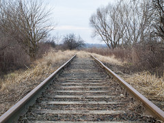 railway5 (Dreamaxjoe) Tags: vasút celldömölk iparvágány elhagyatott railway outofservicerailroadtrack aftersunrise napfelkelteután