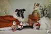 Dear Santa (houndstooth4) Tags: dog greyhound flattery dogchal ddc odc 4952 52weeksfordogs