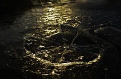 Cracked..x (Lisa@Lethen) Tags: ice path cracked broken sunlight frozen winter weather slippy