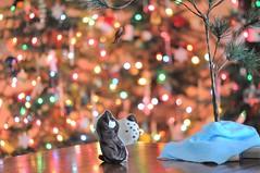 bacon and the basset hound (ladybugdiscovery) Tags: bacon treat bassethound dog christmas bokeh tease