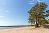 Finnland 2010 - Yytteri Beach (karlheinz klingbeil) Tags: finnland sand beach ostsee meer strand finland water ocean tree wasser ozean balticsea suomi baun