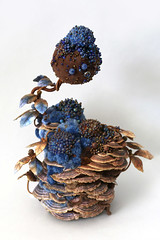 Amy Gross, Trametes Blue Biotope (amyla174) Tags: amygross art artwork fiberart fiber fungi treefungus biotope symbiosis sculpture blue leaves beadedobjects beaded beads paper momentumgallery asheville smallworksbigimapact