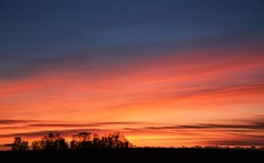 December Dusk (vibeke2620) Tags: solnedgang denmark countryside pålandet skumring december nikond3300