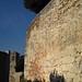 Cori: polygonal masonry terracing