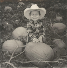 "The Pumpkin Whisperer (dreamscapesxx) Tags: instant polaroid theimpossibleproject ""polaroidspirit600"" impossiblebw600film myson toddler pumpkinpatch pumpkins littleboy blackandwhite ""greenvillemi"" polavoid snapitseeit"