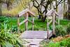 In the park (Maria Eklind) Tags: kungsparken sweden outdoor bridge malmö bro312 nature skånelän sverige se