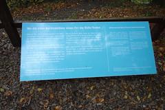 Rügen - Naturpark Jasmund (Alf Igel) Tags: rügen ruegen naturparkjasmund natureparcjasmund naturpark natureparc jasmund königsstuhl kreidefelsen buchenwald urwald worldnatureheritage weltnaturpark island insel mecklenburgvorpommern germany deutschland ostsee balticsea