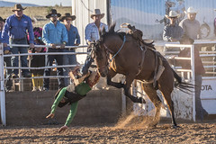 Rodeo (stenaake) Tags: australia rodeo carrieton orroroo sa southaustralia oz aussie aussies show people riding animal wild jump man men fight hard horse