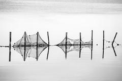 Su Scaiu, Cabras (nicolamarongiu) Tags: water acqua biancoenero blackandwhite minimal minimalism riflesso fishing cabras monocrome abstract sardegna italy